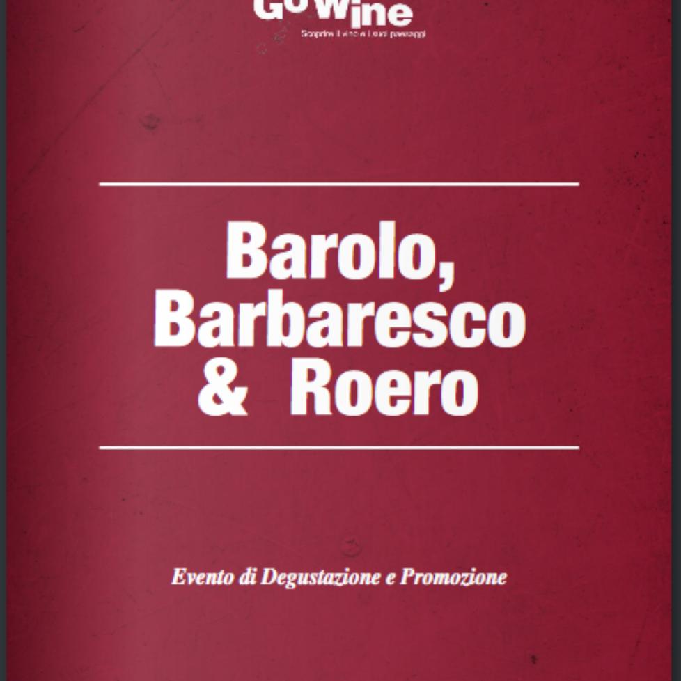 Barolo Barbaresco Roero GoWine